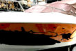 Design Folie, Antifouling Folie